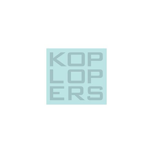 Koplopers in de zorg